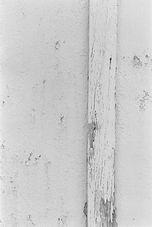 20181209 - Roll 267 - 026-Nick-Bedford,-Photographer-Black and White, Brisbane, Kodak TRI-X 400, Leica M7, Street Photography, Voigtlander 35mm F1.7.jpg