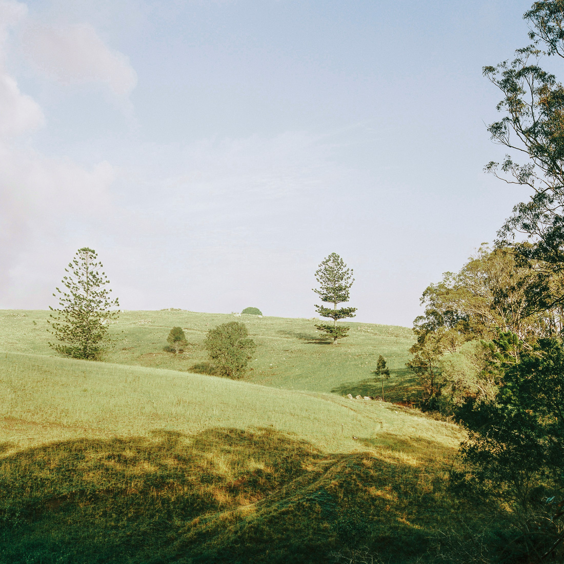 Mount Maroon hills.