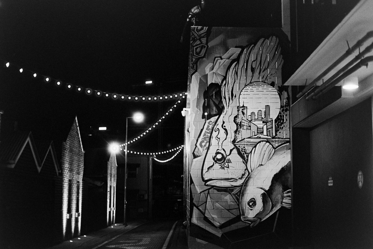 Which came first, the name, Fish Lane, or the fish murals?
