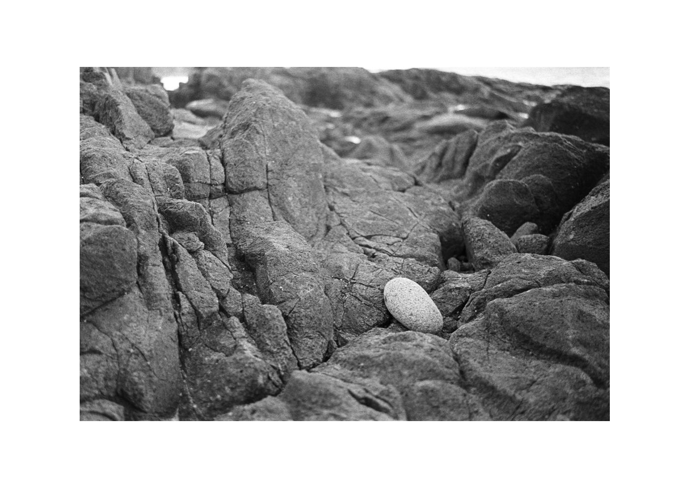 Lone Rock Resting, Coolum