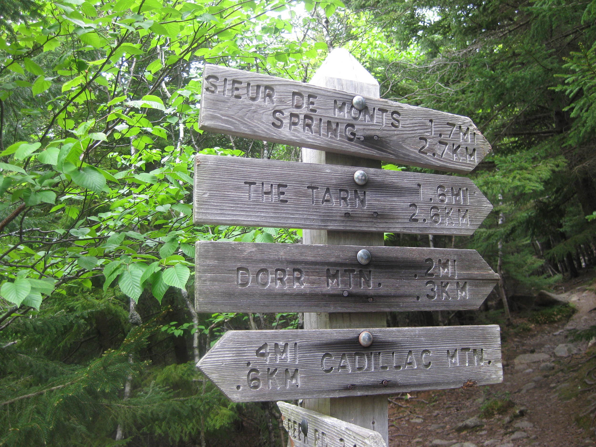 This way to Cadillac Mountain