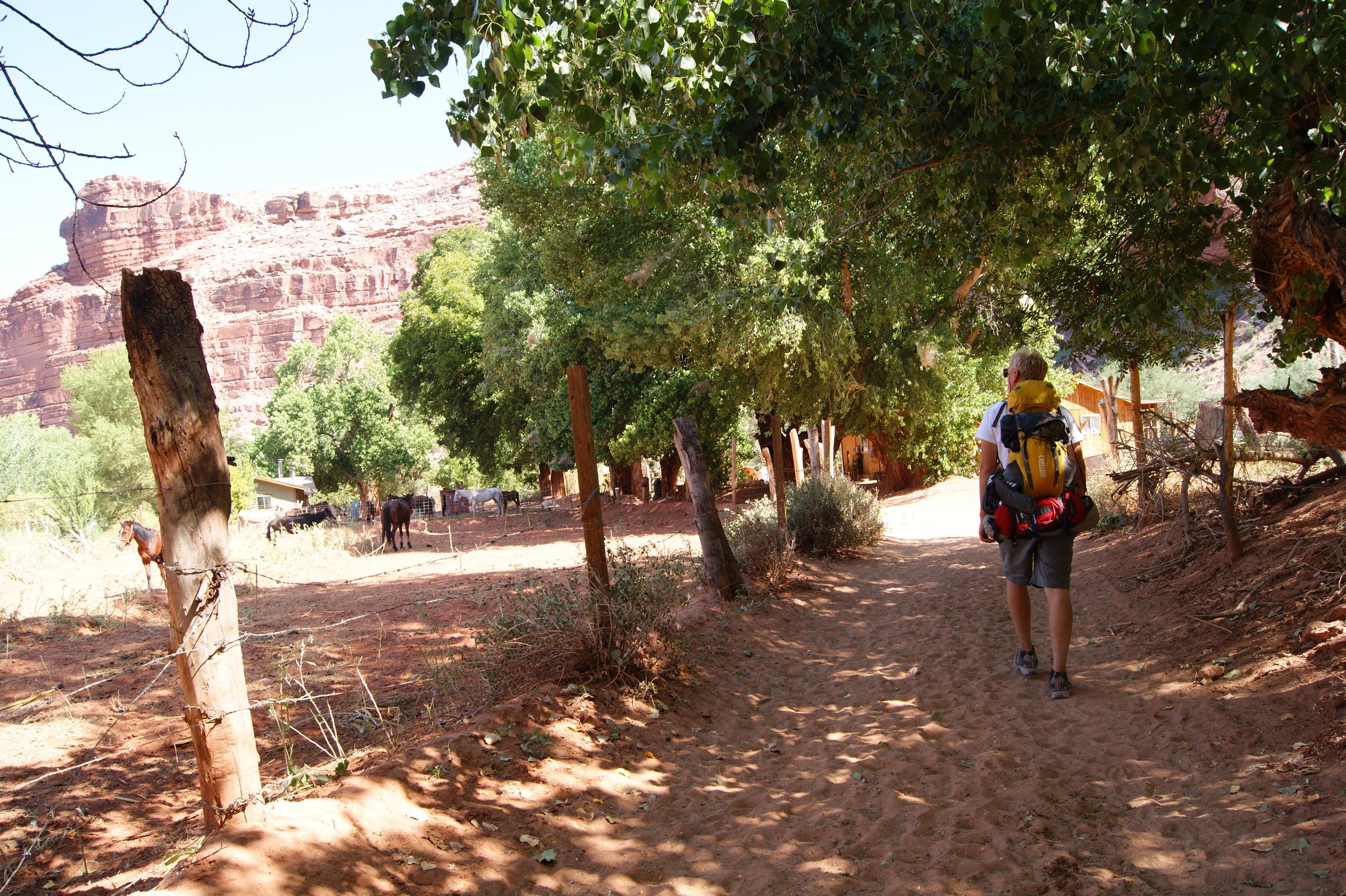 Entering the Havasu village