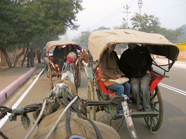 Rickshaw to the Taj