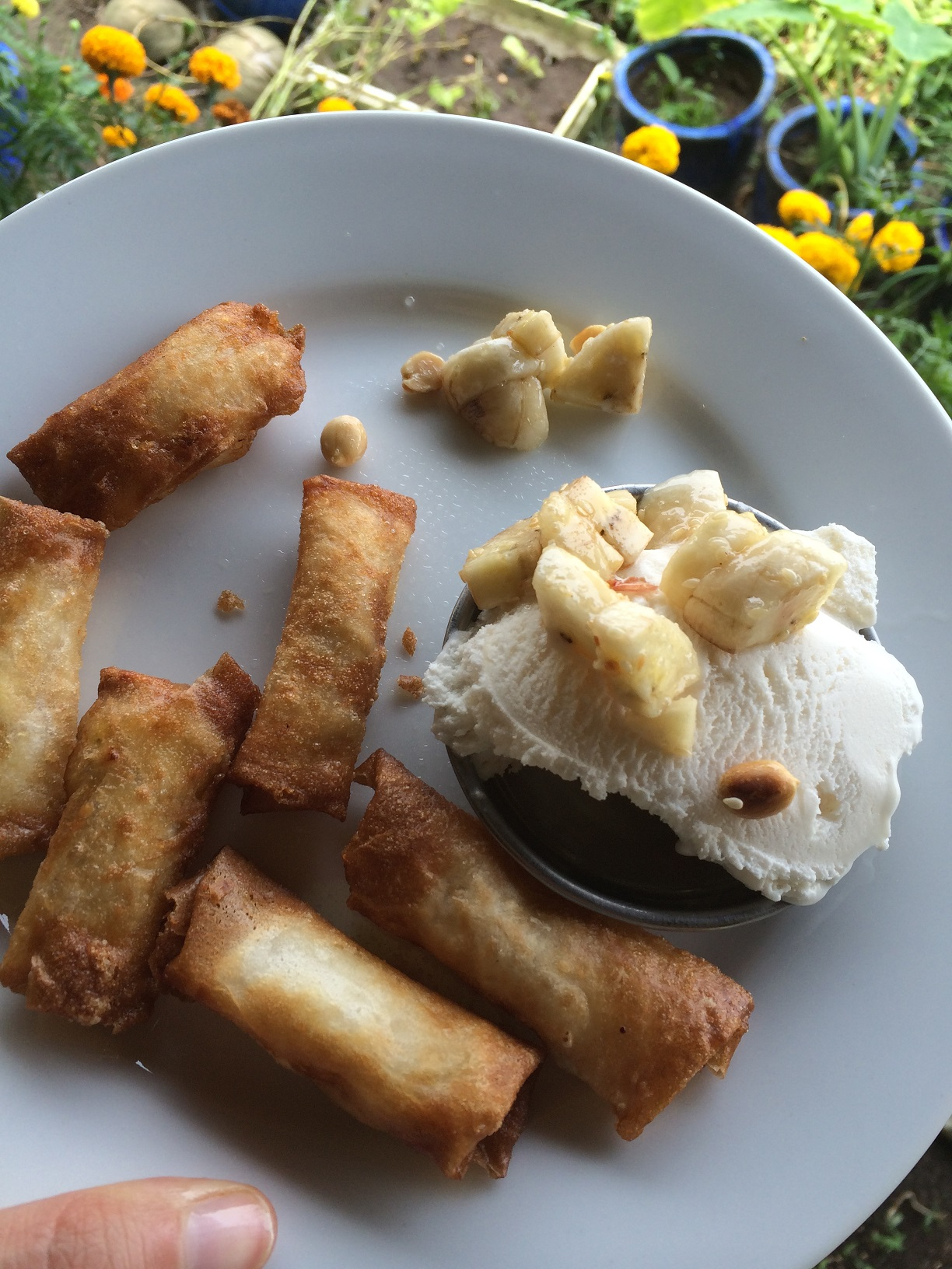 Banana spring rolls with coconut ice cream