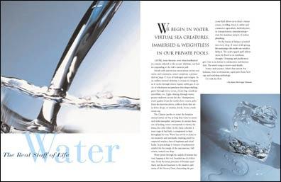 Water article.jpg