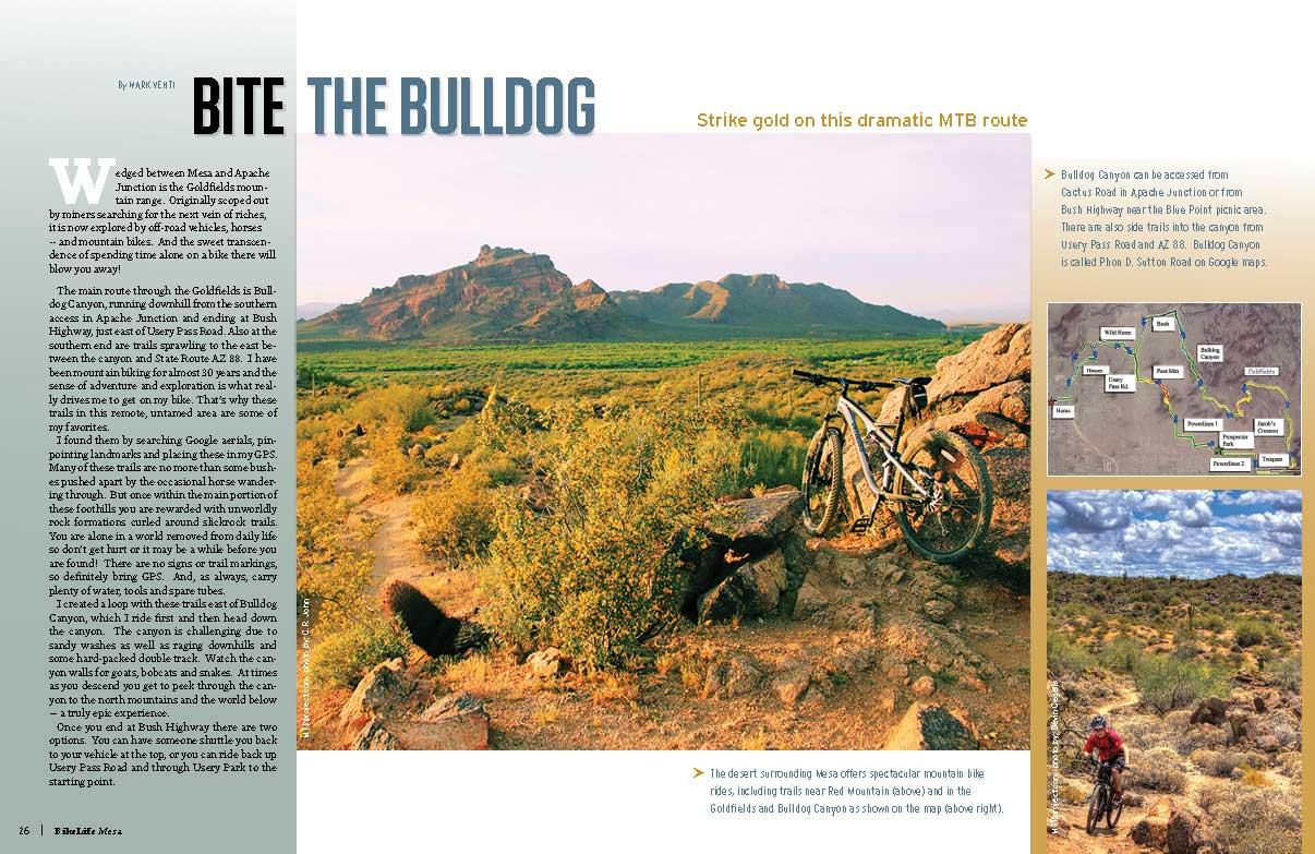 Bite-the-Bulldog-MESA-story-OPWEB.jpg