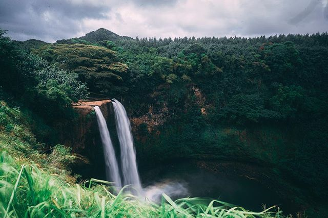 Waterfalls! Such gorgeous things. We have here Wailua Falls, followed by 'Opaeka'a Falls.