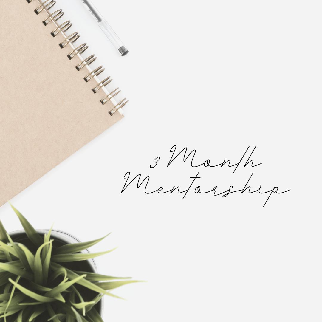 3 Month Mentorship
