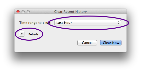 The Clear Recent History window lets you specify how much history to clear. Choose an interval that includes your first visit to the site. For example, if you first visited two hours ago, choose Last 4 Hours. If you visited over four hours ago, choose Everything.  Next, click on the arrow next to Details.