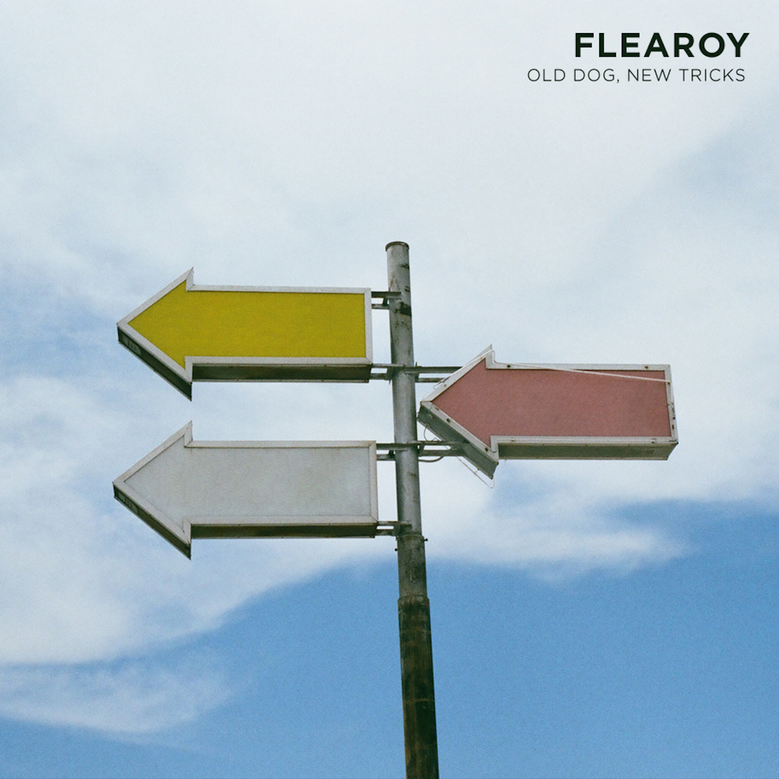 FLEAROY Covers Album Cover for digital.jpeg