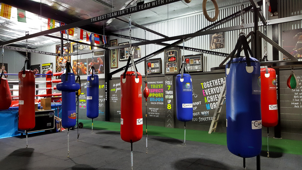 the-concept-gym-interior-hand-painted-walls-posters-and-canvases.jpg