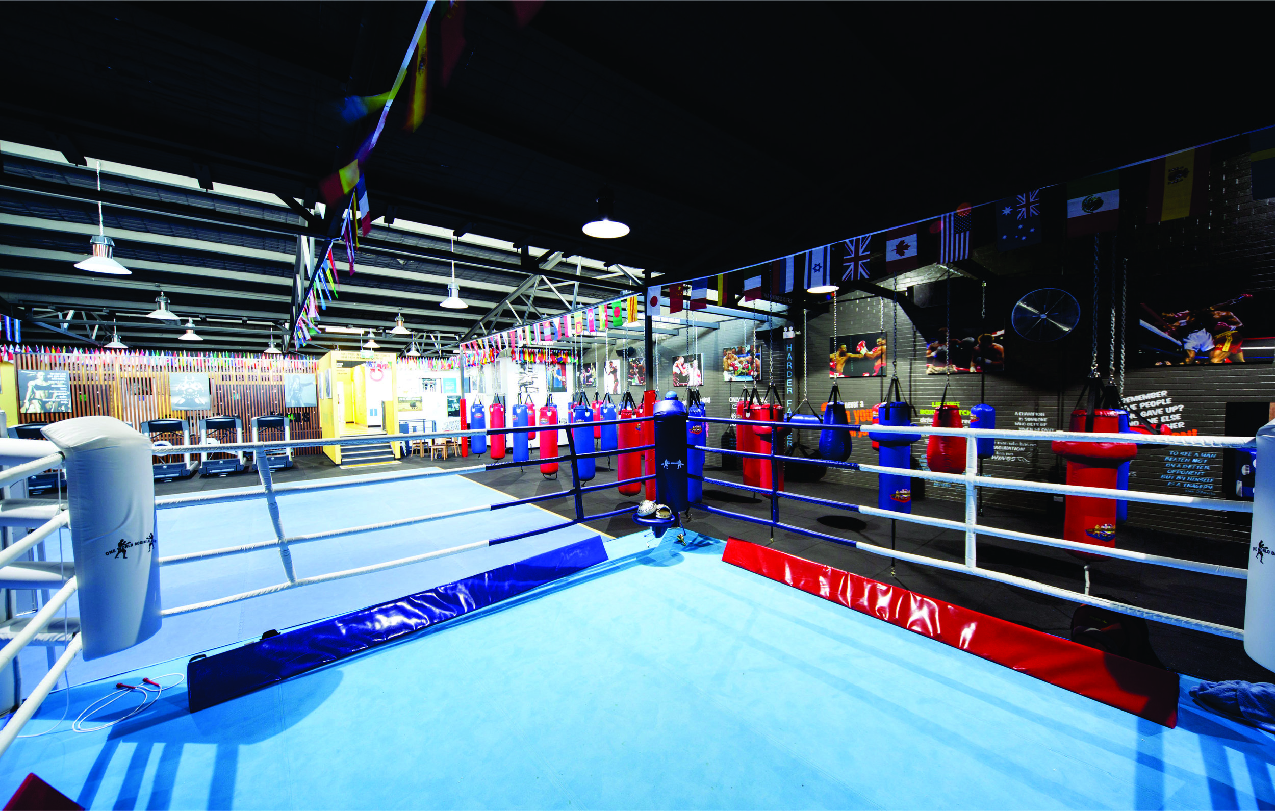 the concept signage boxing ring.jpg