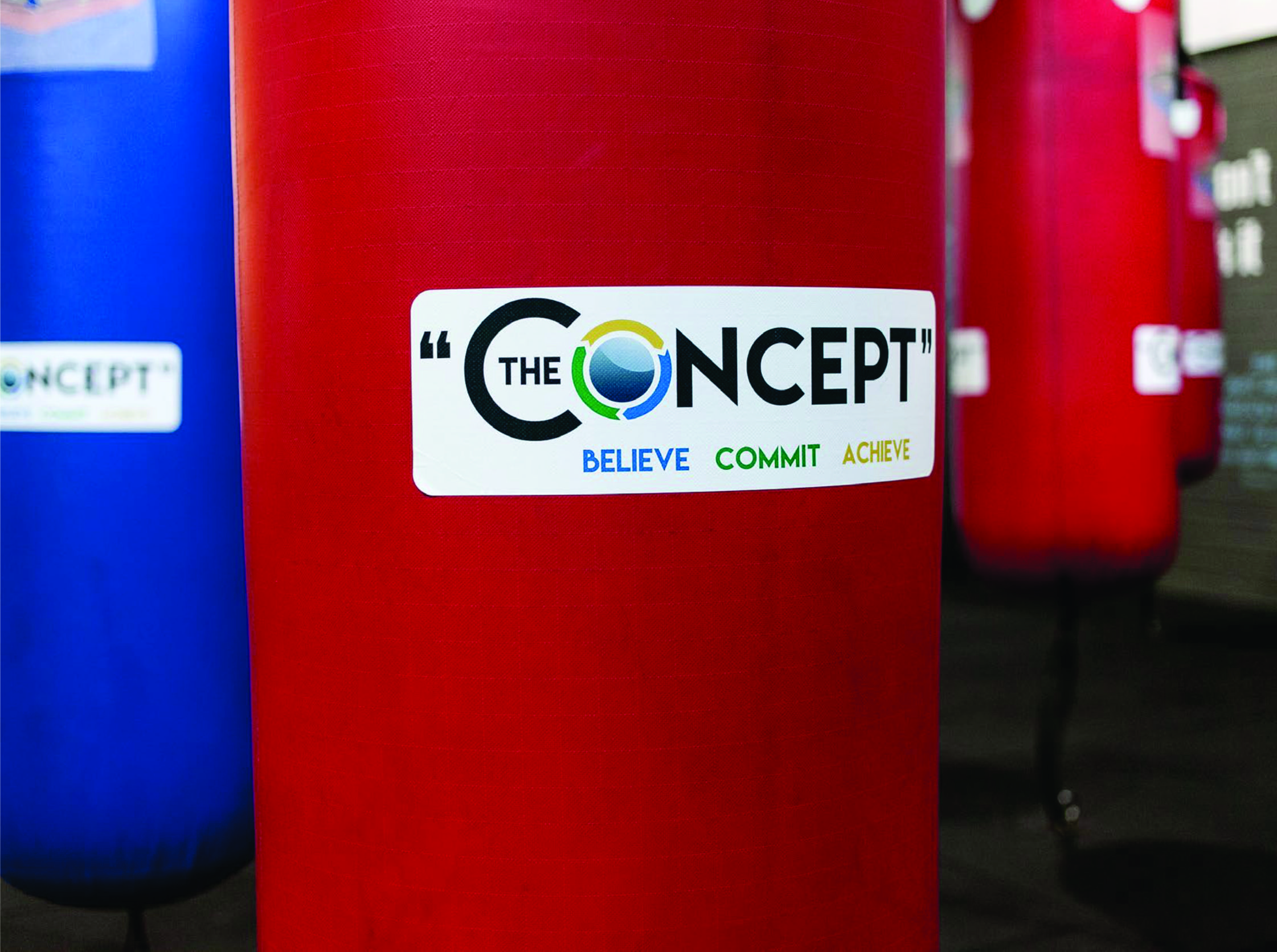 the concept boxing bag decal.jpg