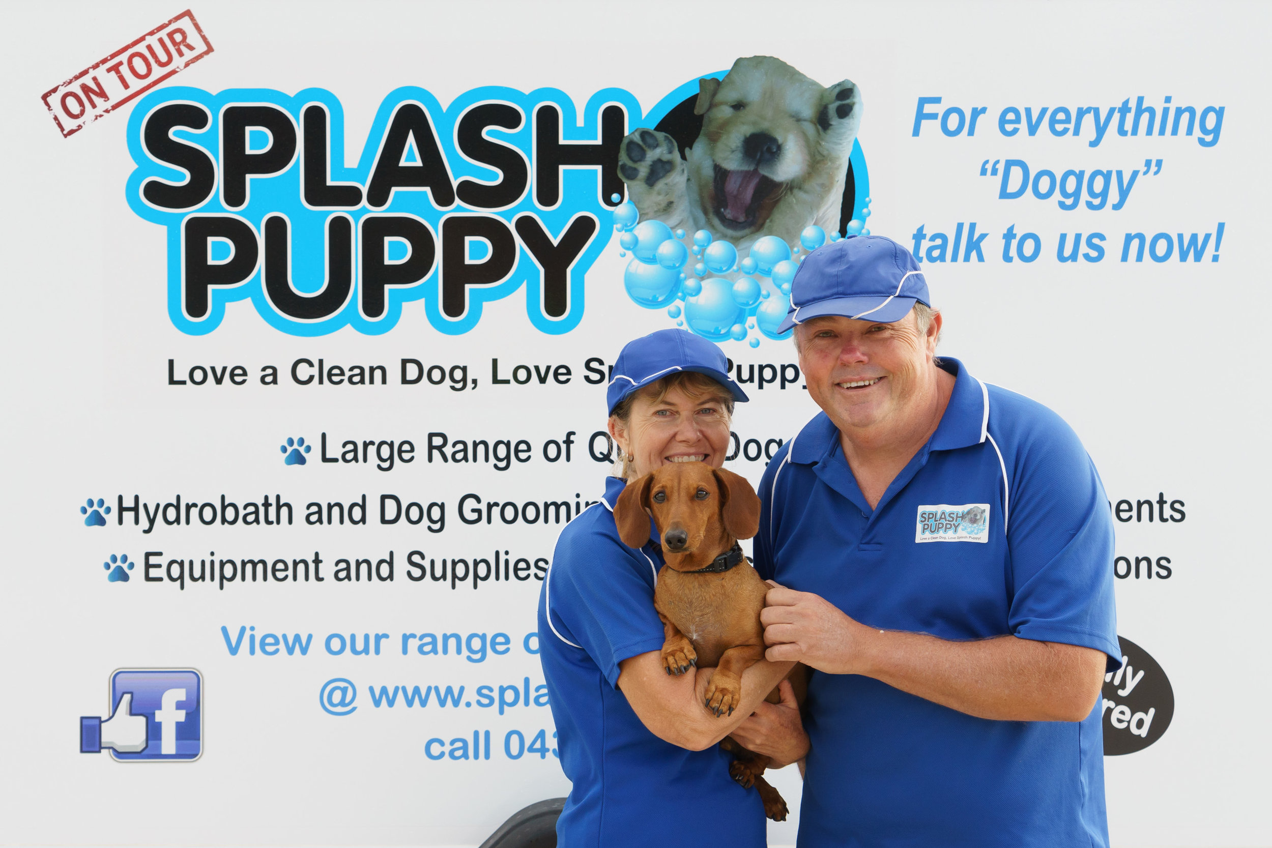 We both love dogs - and have 20 years combined experience working within the dog grooming industry