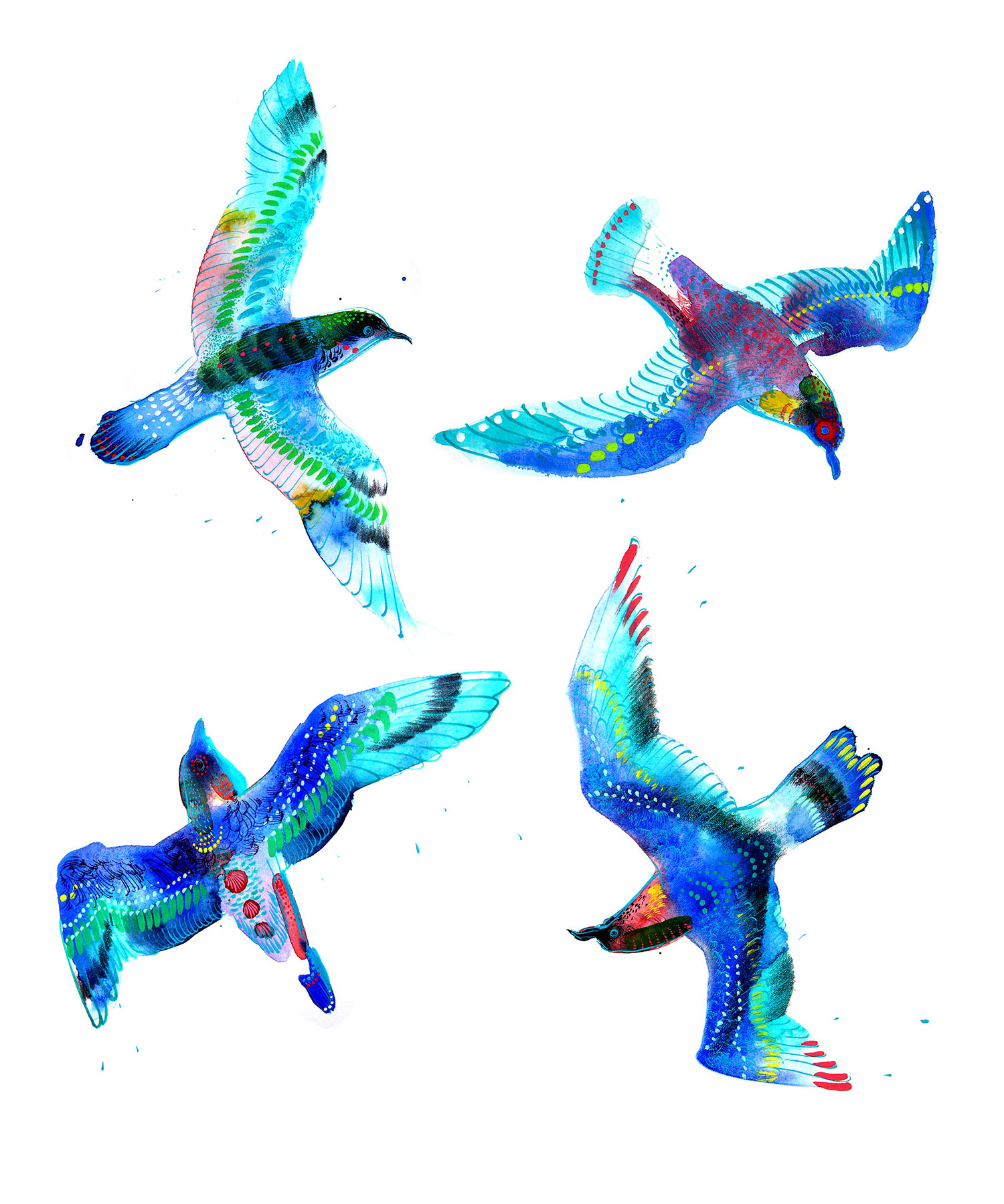 Blue Birds   -Personal Project