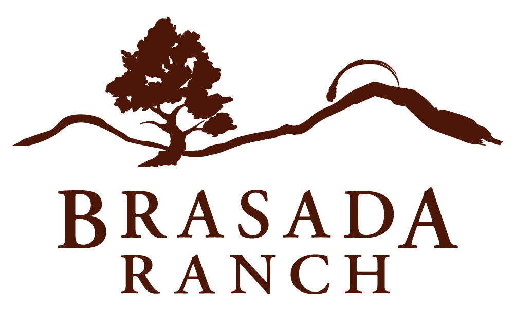 FINAL_Brasada_Logo.jpg