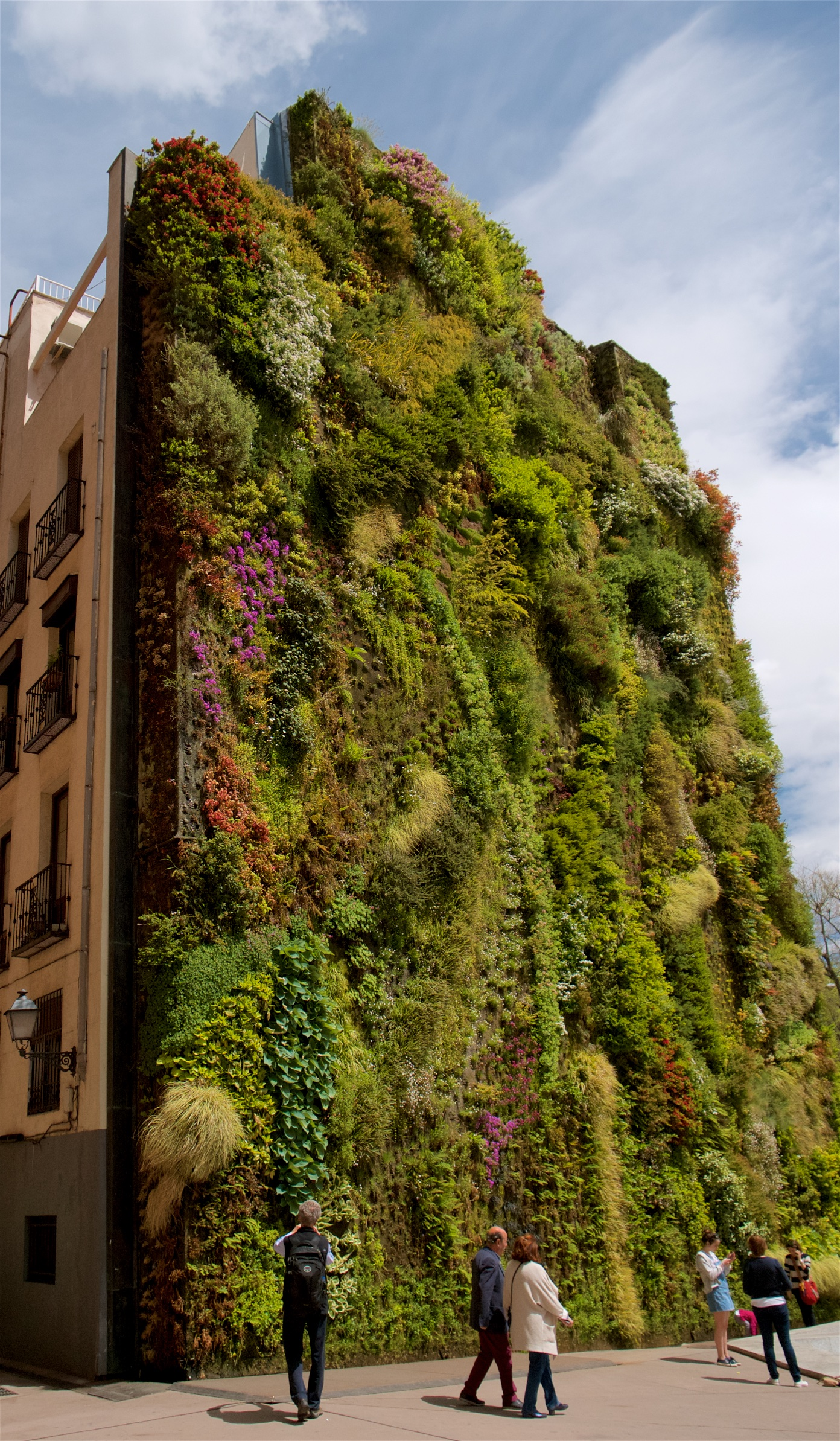 Living wall, Madrid
