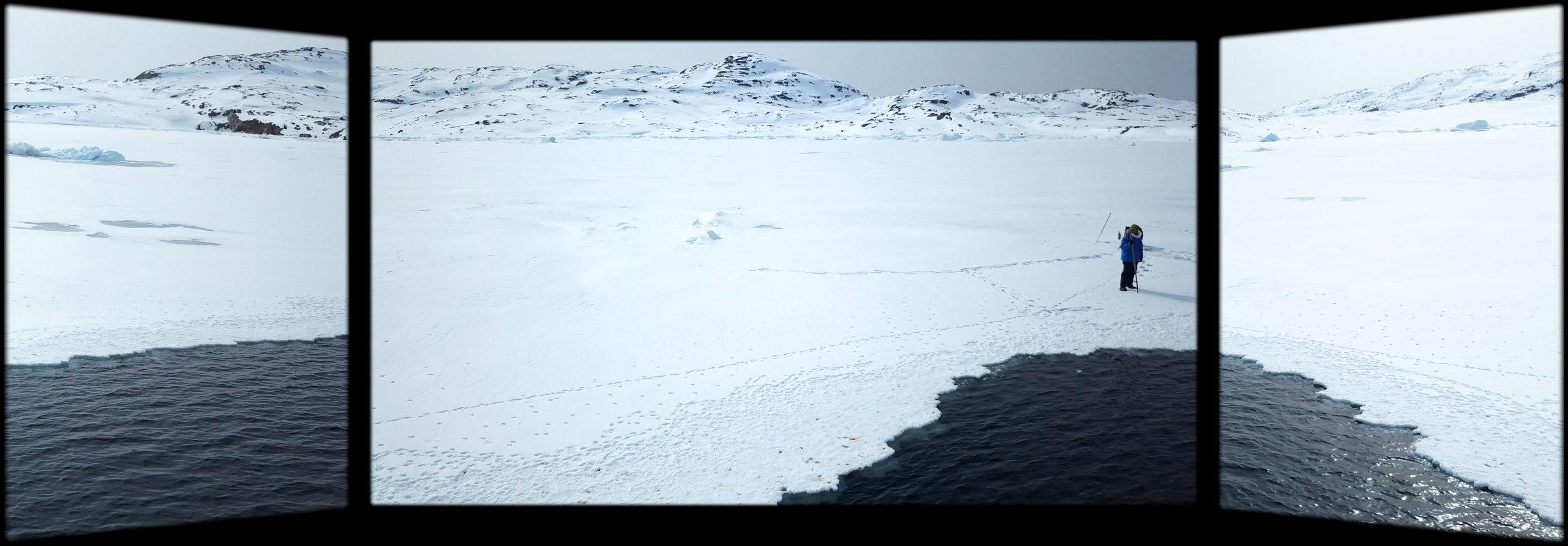 Sea Ice Triptych 1.jpg