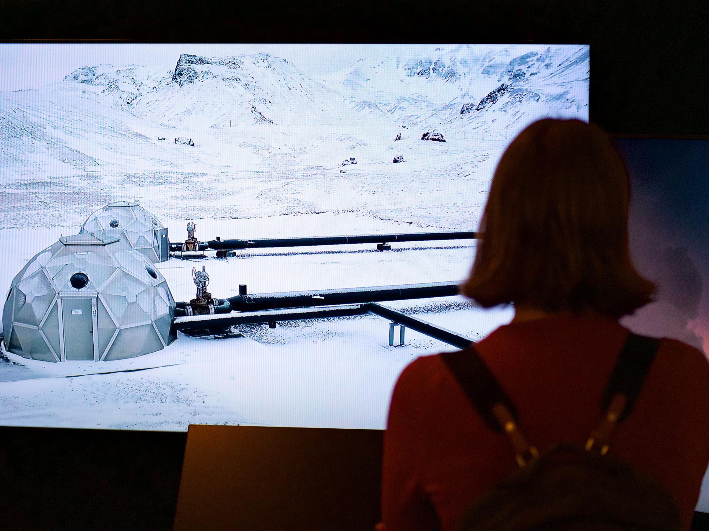 Exhibition photograph courtesy  Rachel Carson Center,  Munich.