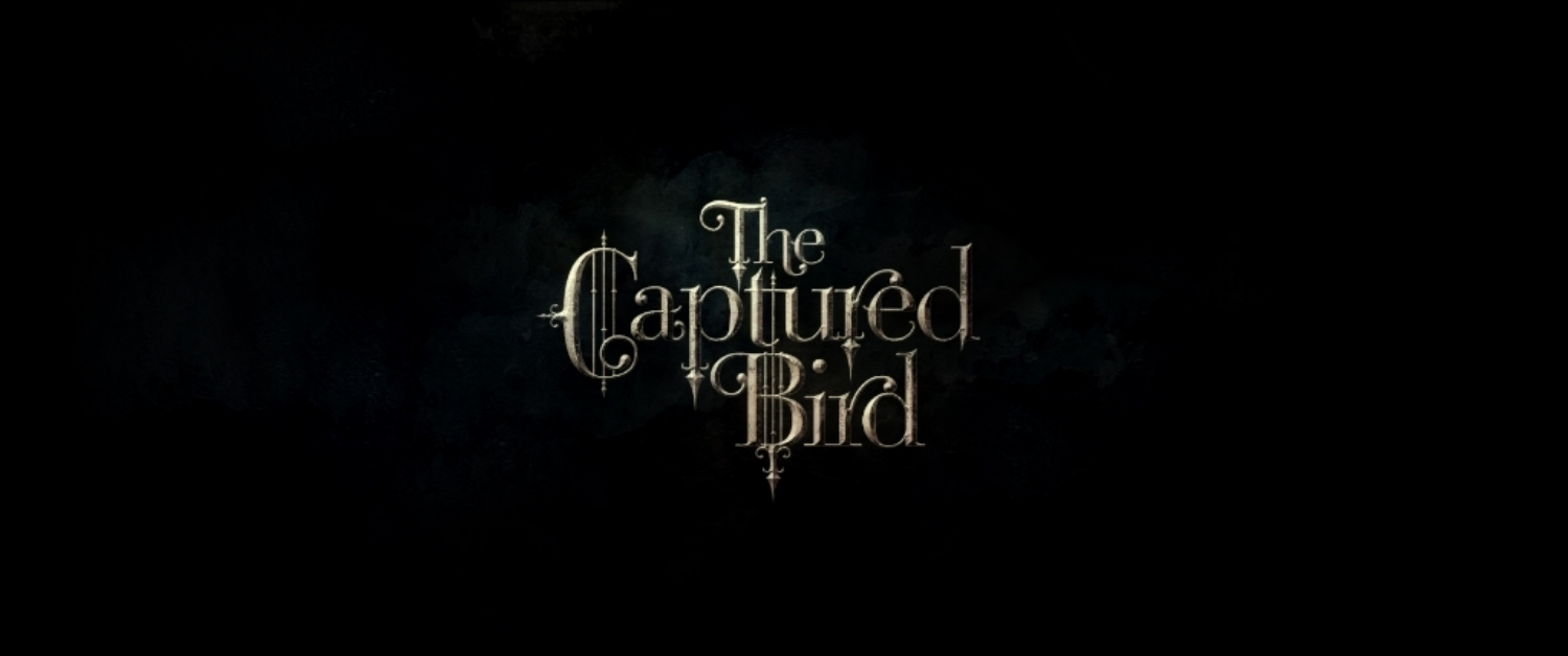 The Captured Bird   [ Osaka Sunset Pictures ]