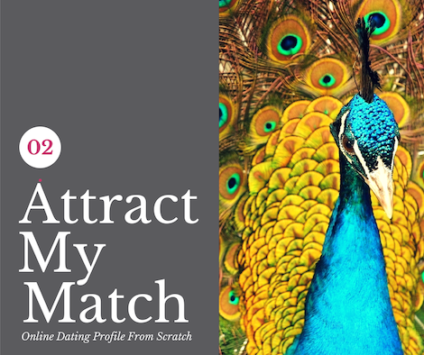 Attract My Match Online Dating Profile Writing Package. Online dating profile from scratch, selecting your very best photos, online dating advice, online dating tips. For the best and most popular (free & paid) Australian dating sites RSVP, eHarmony, OkCupid and OasisActive. eDateMate Australia