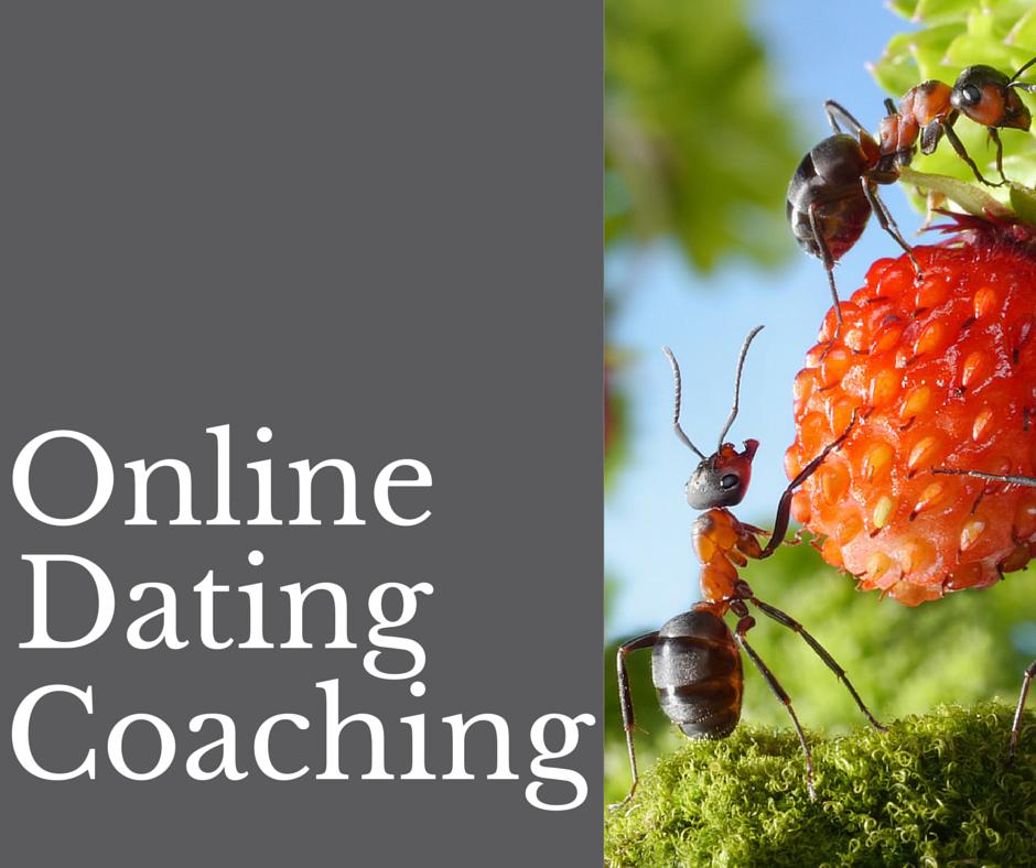 dating coaching Australia datingside for nerder gratis