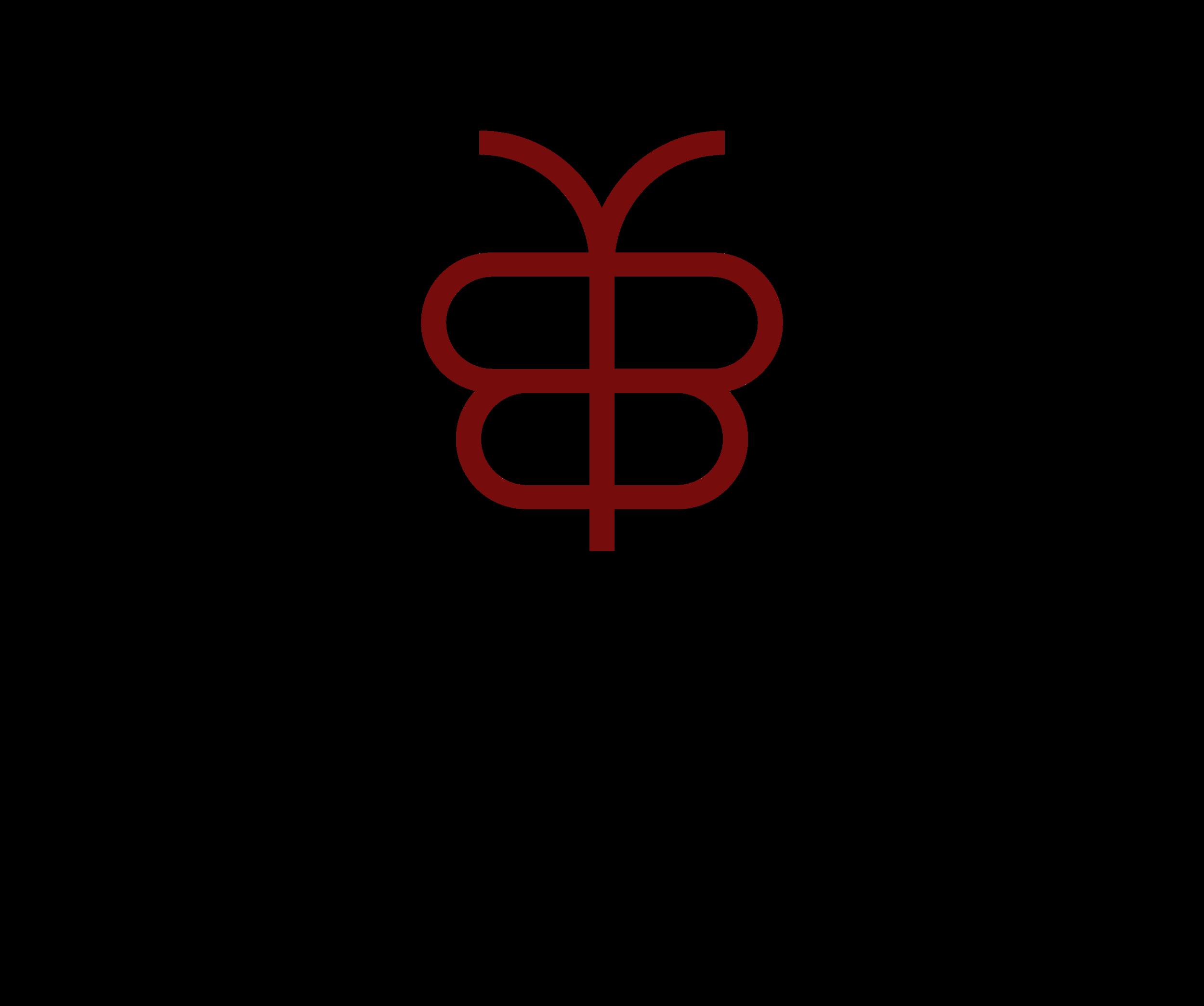 Mariposa Networks-logo.png