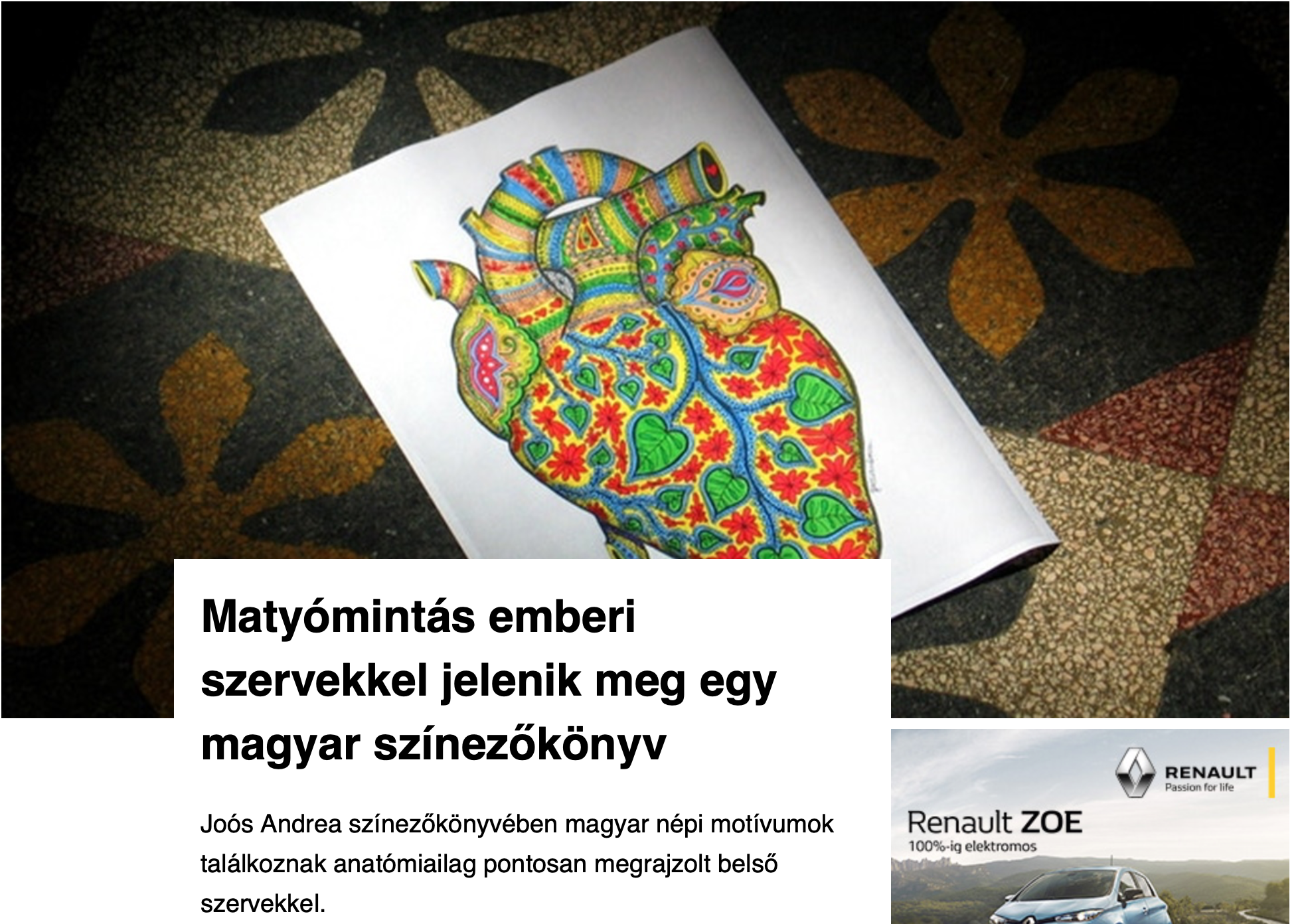 szívtetkó anatómiai színező joós andrea