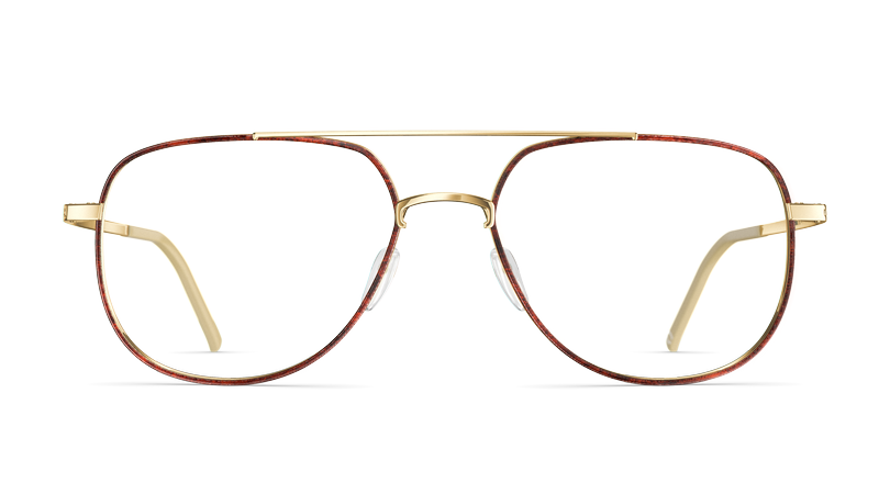 T036_Erwin_7930_glorious_gold_brown_tortoise_front.png