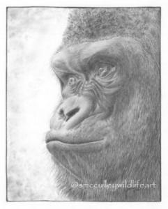 wr gorilla.jpg