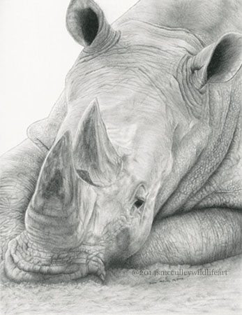 White rhinoceros paper size 8 x 10 and 11 x 14