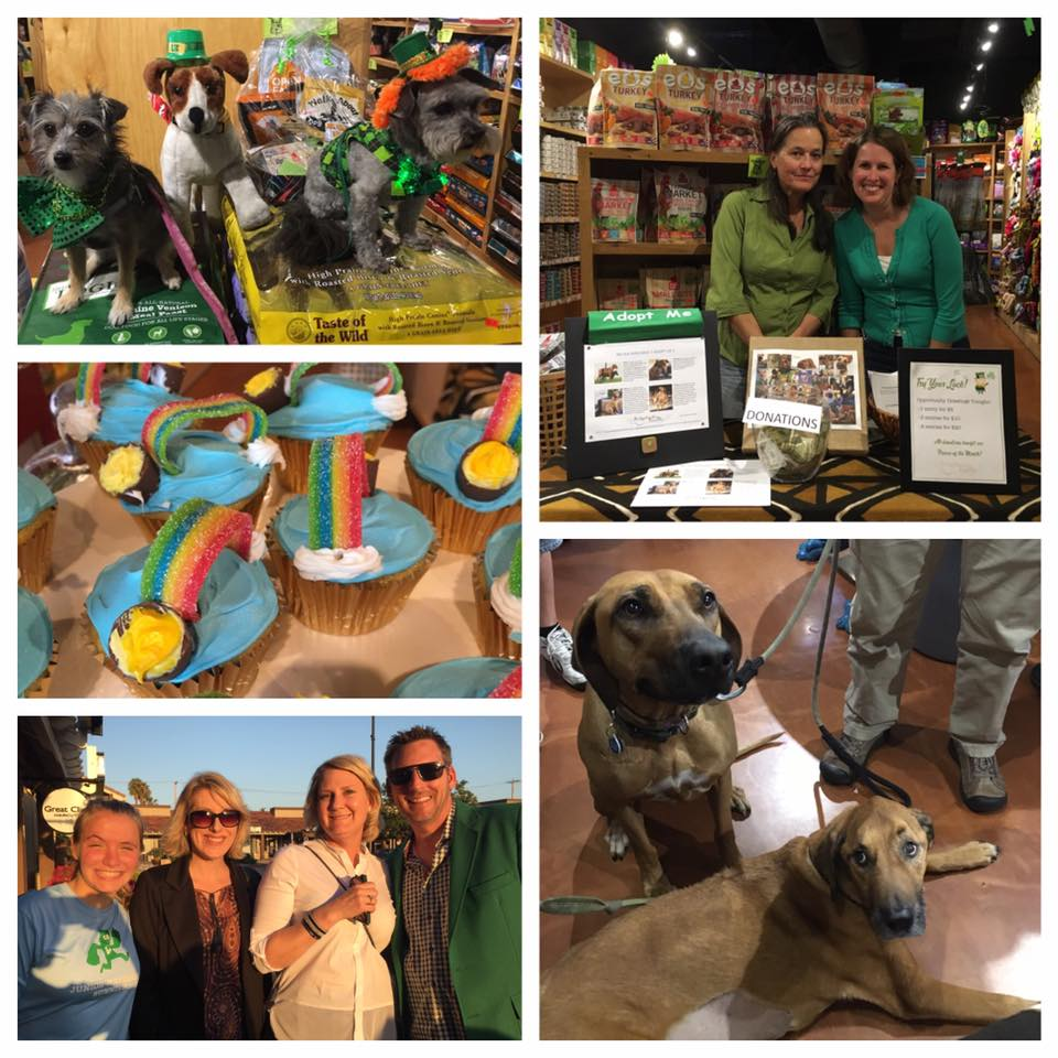 March 18, 2016  - Pupologie Encinitas's 11th Anniversary Yappy Hour. We were the featured Rescue of the Month.