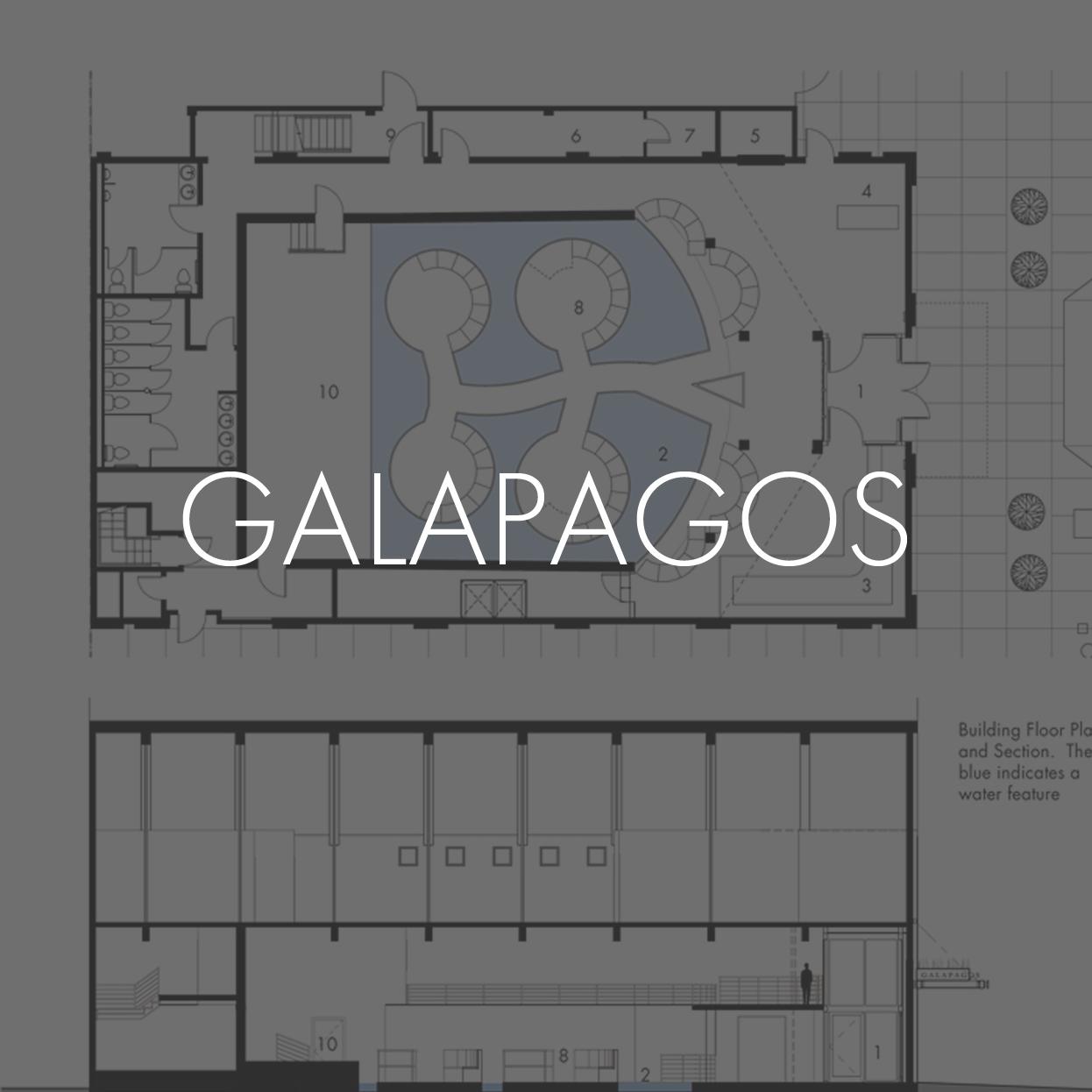 02_THUMBNAIL galapagos.jpg
