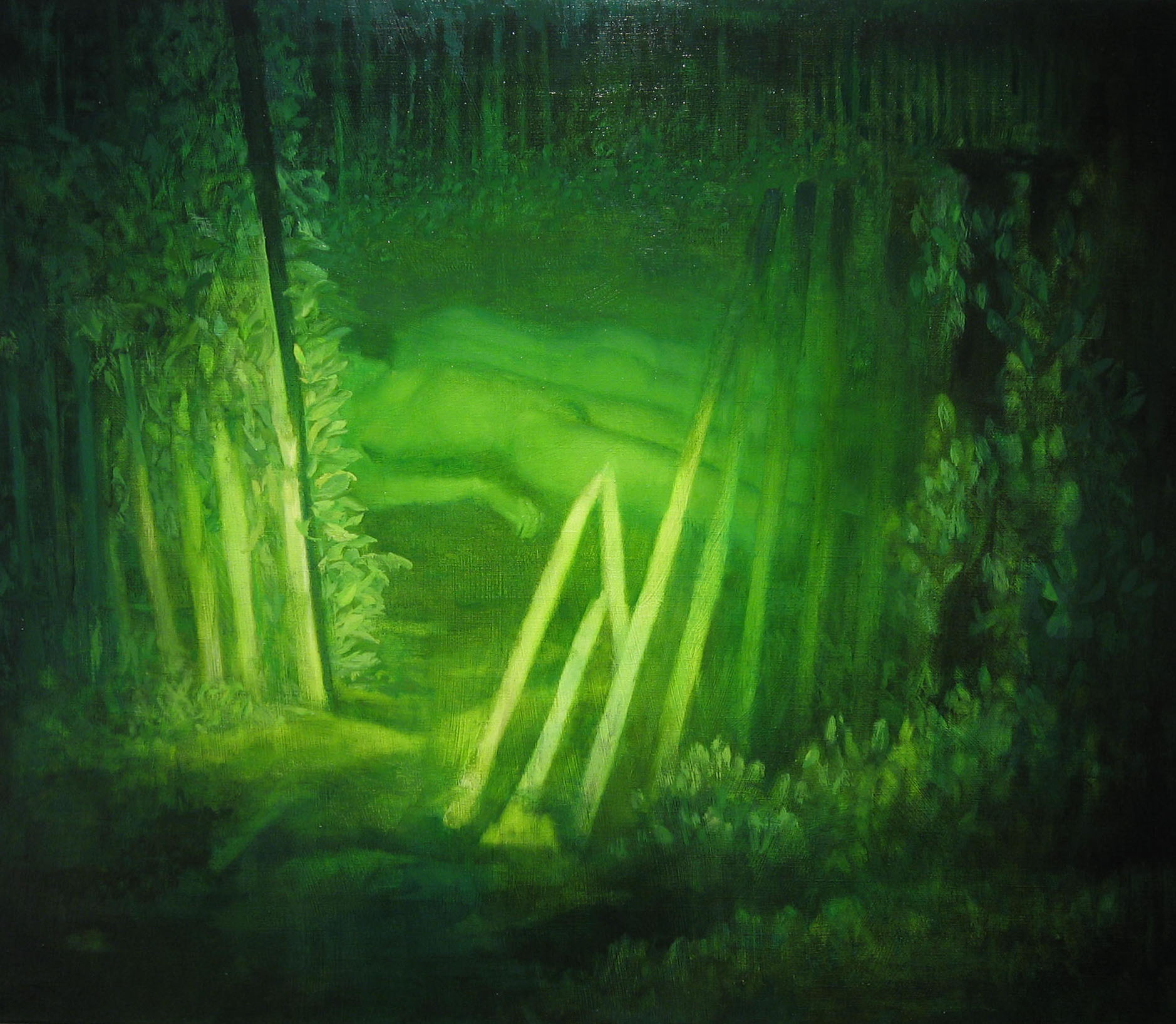 Bryan LeBoeuf   Night Vision, 2004  oil on linen  42 x 36 inches