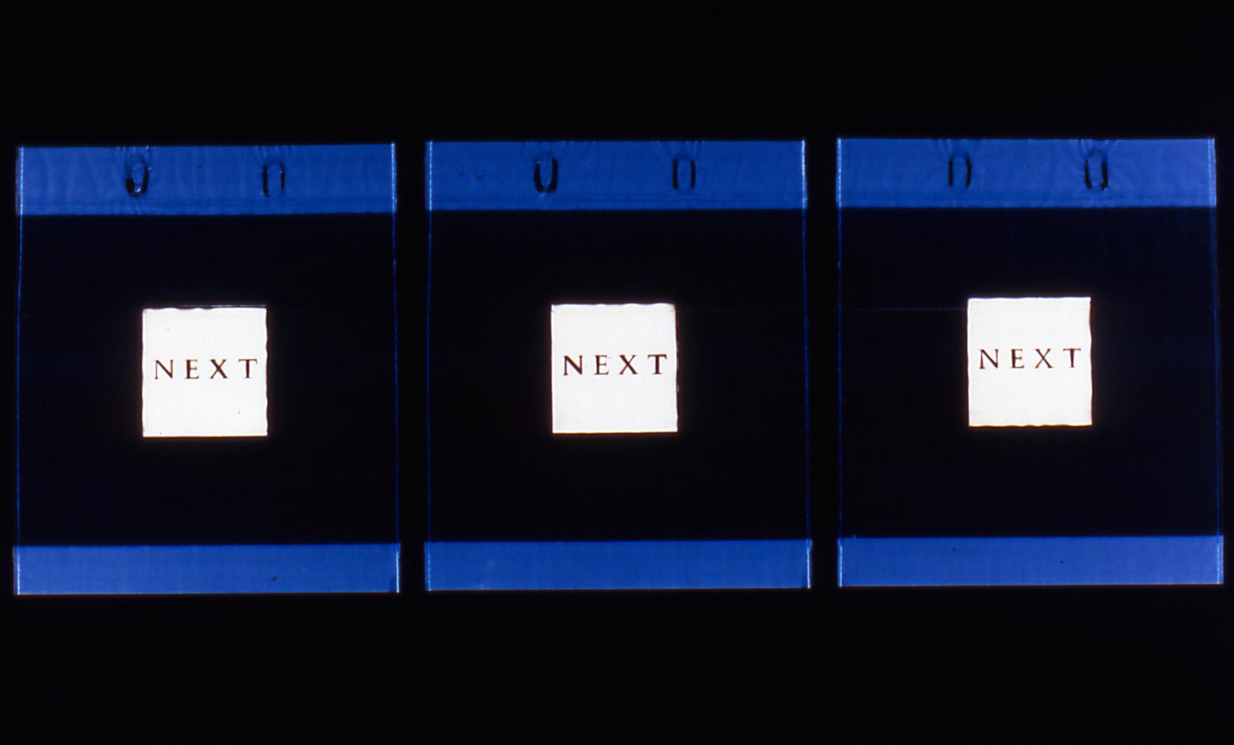 Vaughn Judge   Next, Next, Next , 2002  photogram  30 x 40 inches