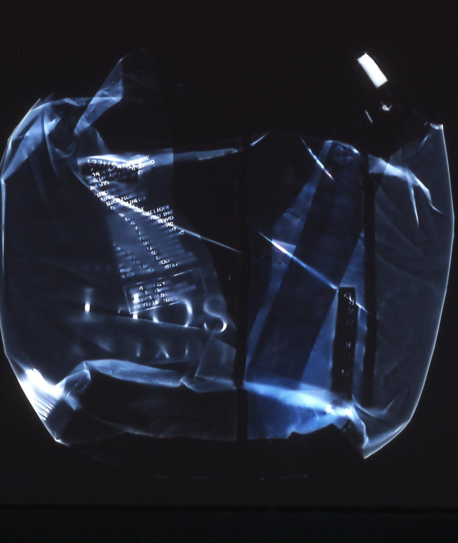 Vaughn Judge   Carrier Bag , 2002  c-print, photogram