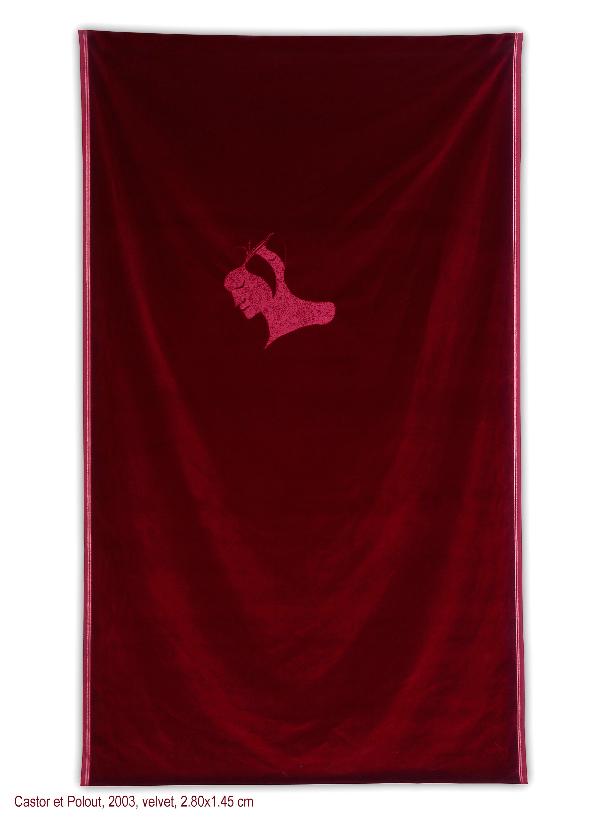 Maro Michalakakos   Castor et Poulou   2003  Velvet  112 x 56 inches