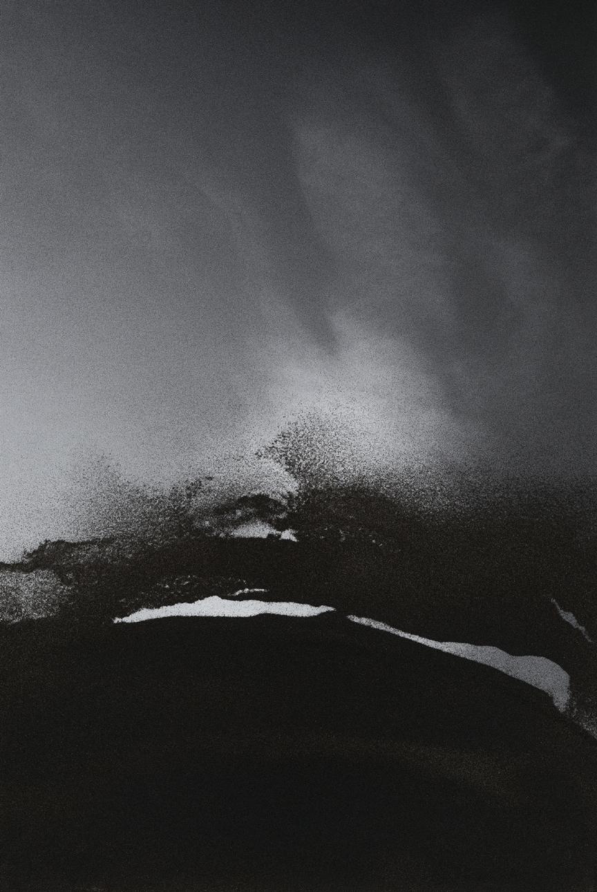 Jocelyne Alloucherie   Lames I (Untitled 4)    inkjet photograph mounted on Dibond (ed. 2/3)    87 x 56 inches