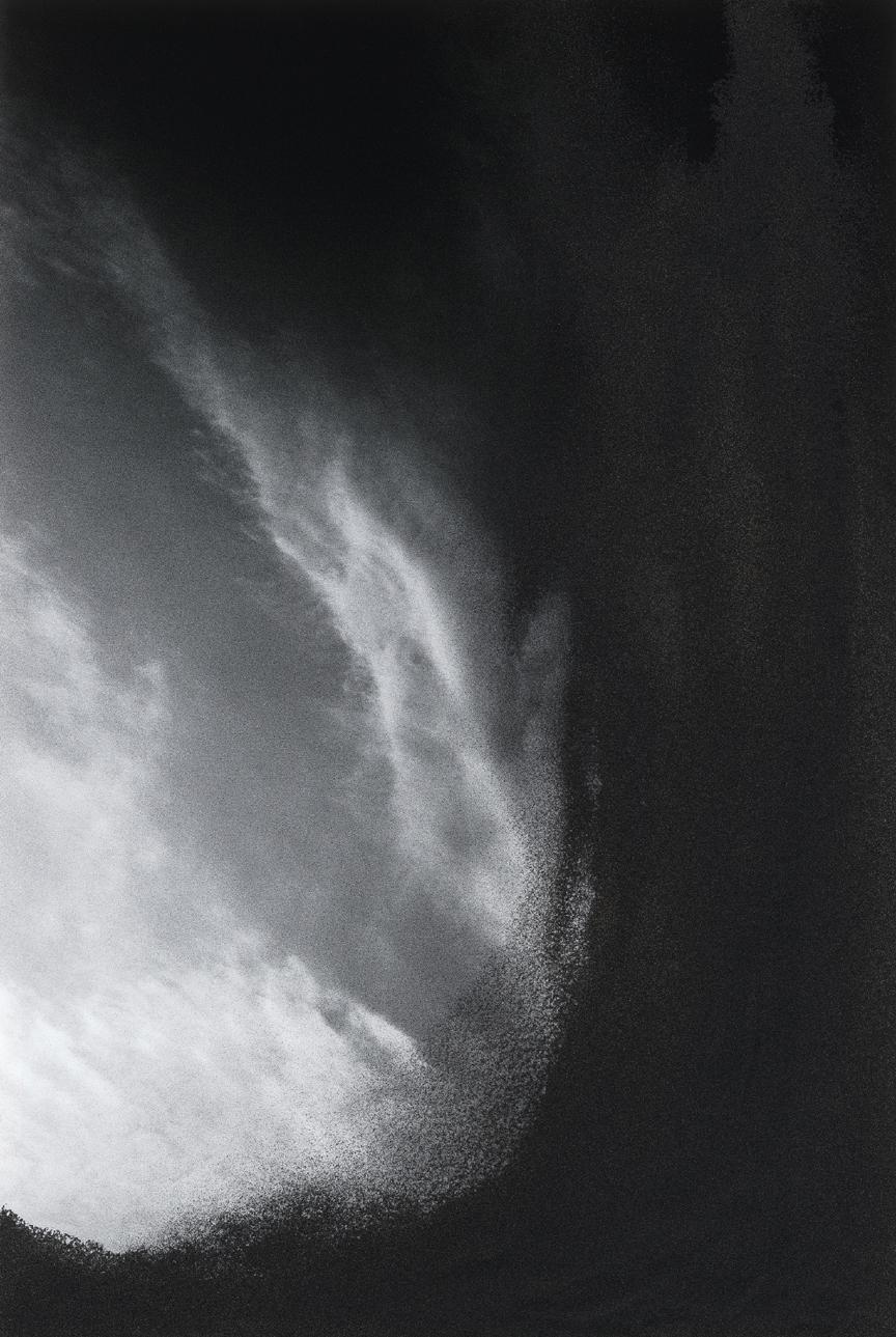 Jocelyne Alloucherie   Lames I (Untitled 5)    inkjet photograph mounted on Dibond (ed. 2/3)    87 x 56 inches