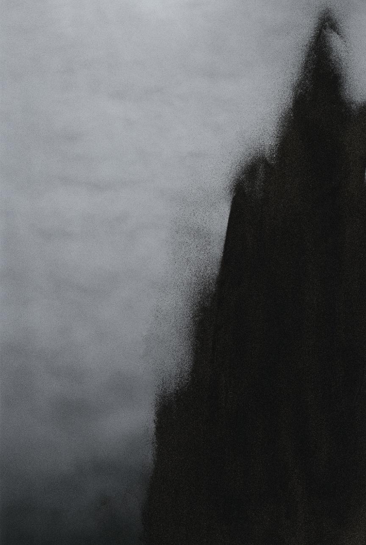 Jocelyne Alloucherie   Lames I (Untitled 6)   inkjet photograph mounted on Dibond (ed. 2/3)  87 x 56 inches