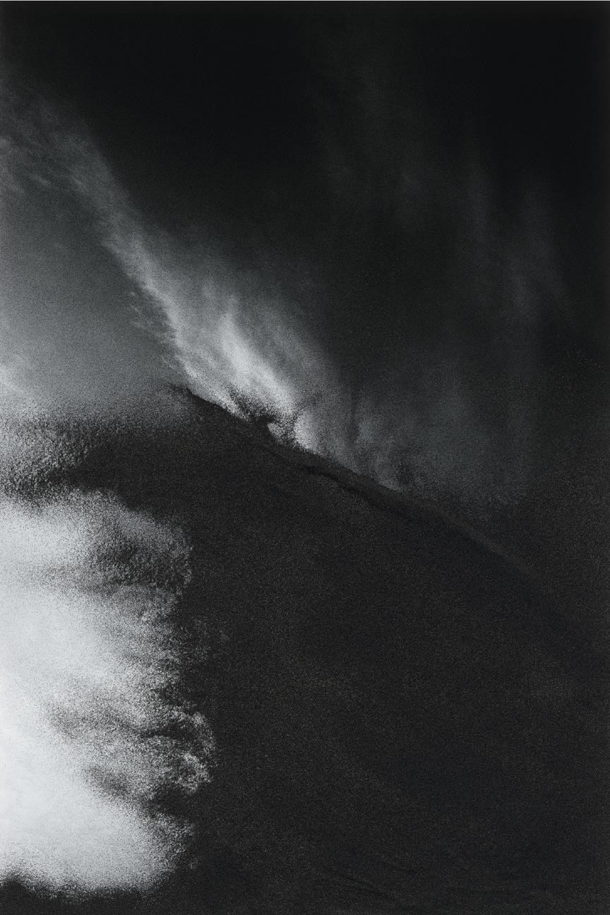 Jocelyne Alloucherie  Lames I (Untitled 7)   inkjet photograph mounted on Dibond (ed. 2/3)    87 x 56 inches