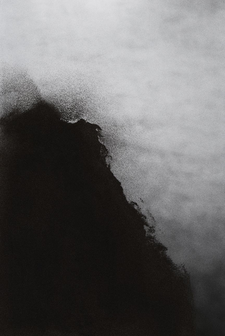 Jocelyne Alloucherie   Lames I (Untitled 3)    inkjet photograph mounted on Dibond (ed. 2/3)    87 x 56 inches