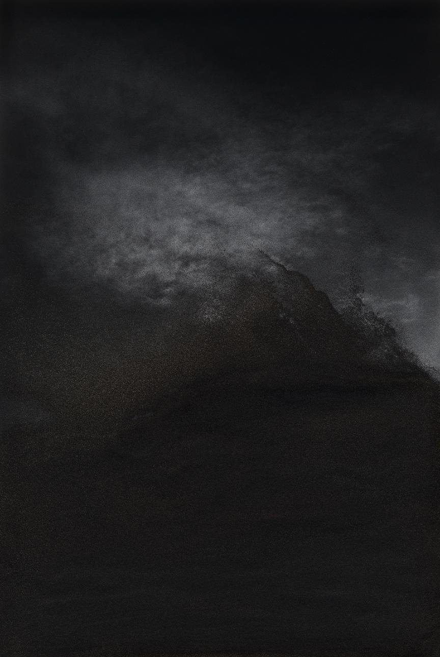 Jocelyne Alloucherie   Lames I (Untitled 8)    inkjet photograph mounted on Dibond (ed. 2/3)    87 x 56 inches