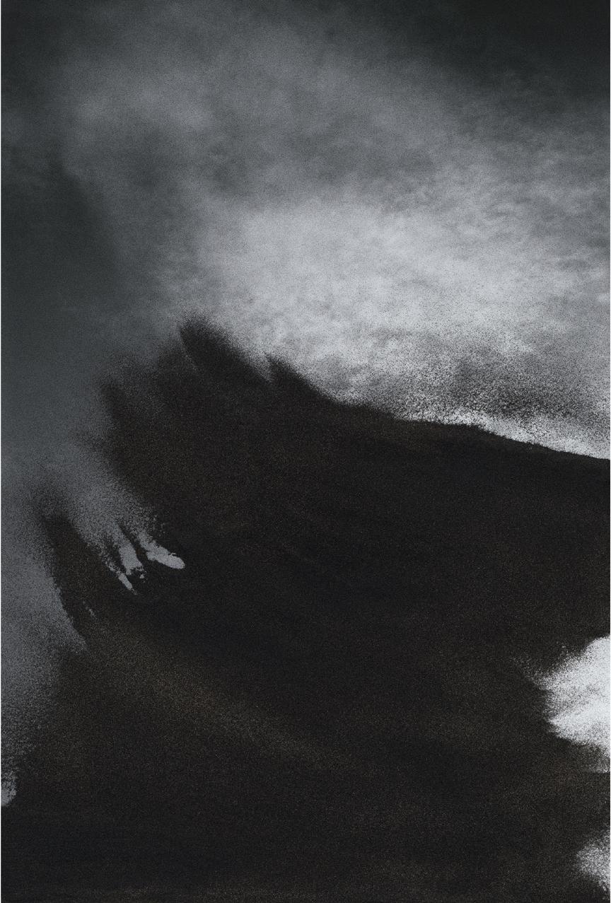 Jocelyne Alloucherie   Lames I (Untitled 10)    inkjet photograph mounted on Dibond (ed. 2/3)    87 x 56 inches