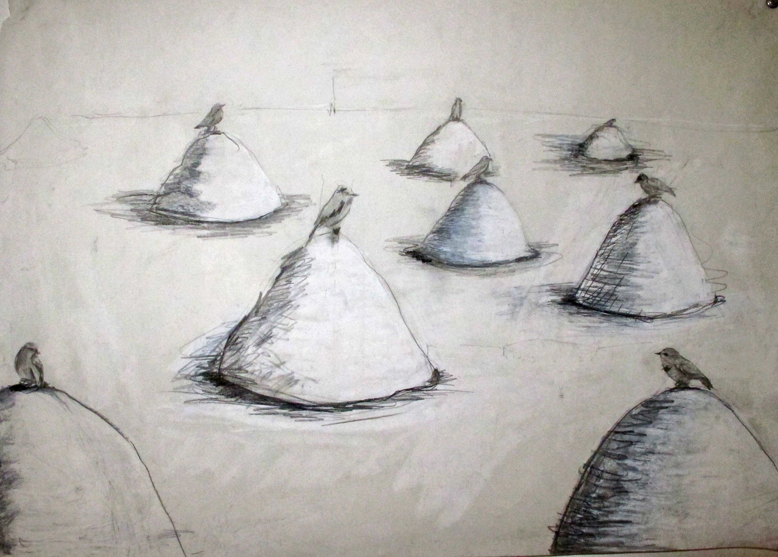 Jennifer Odem     Bird Mound Study   , 2008    Pencil on vellum paper    15 x 21 inches