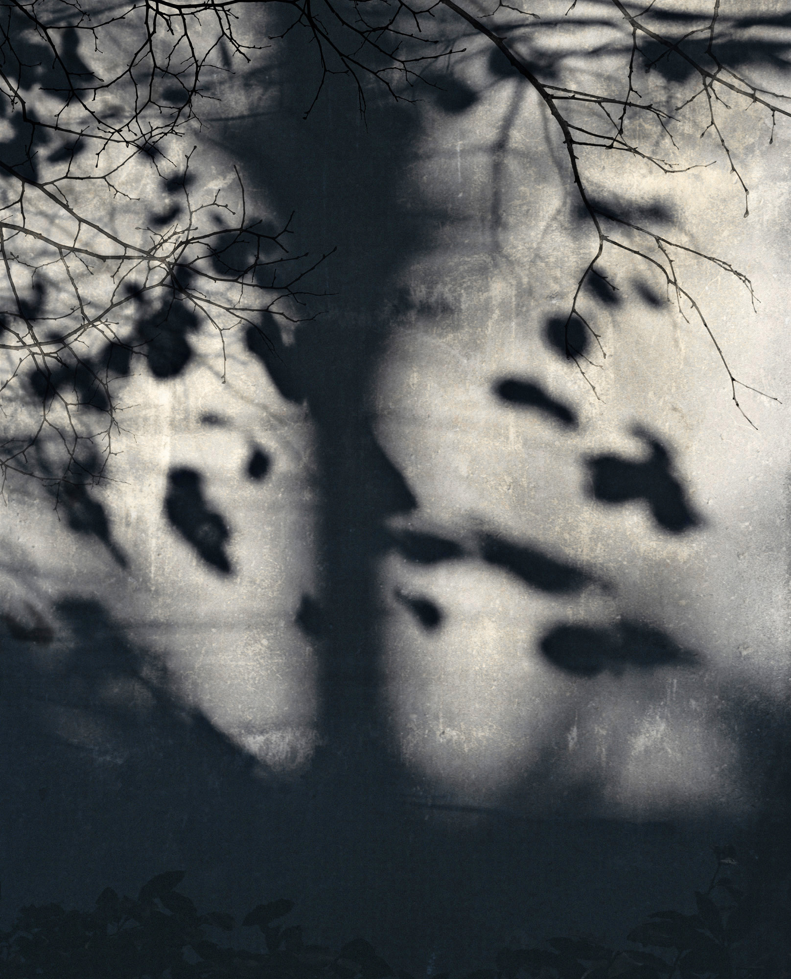 Jocelyne Allucherie Trois de Nuit 3, 2014 Shadows:  Three of Day and Three of Night Series injet photograph on canvas