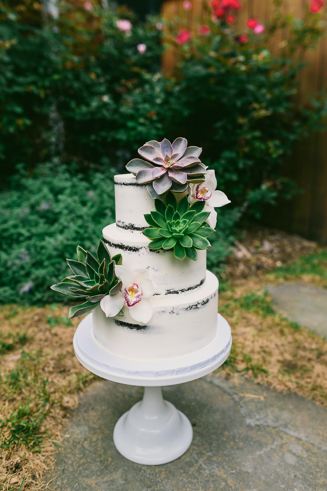 Vineyard Succulent Naked Cake - Sugar Lane Cake Shop