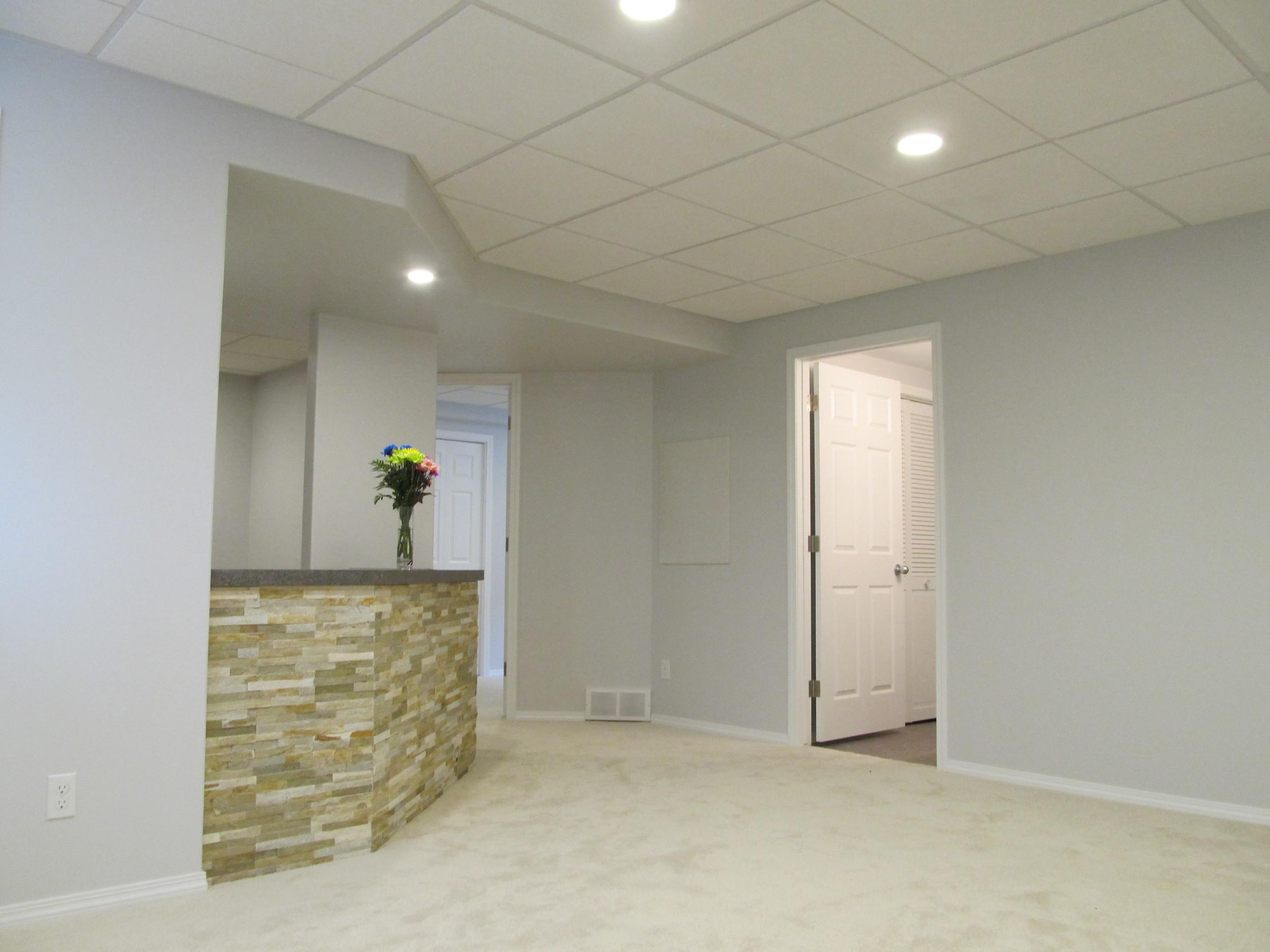 Jeanotte basement development (27).JPG