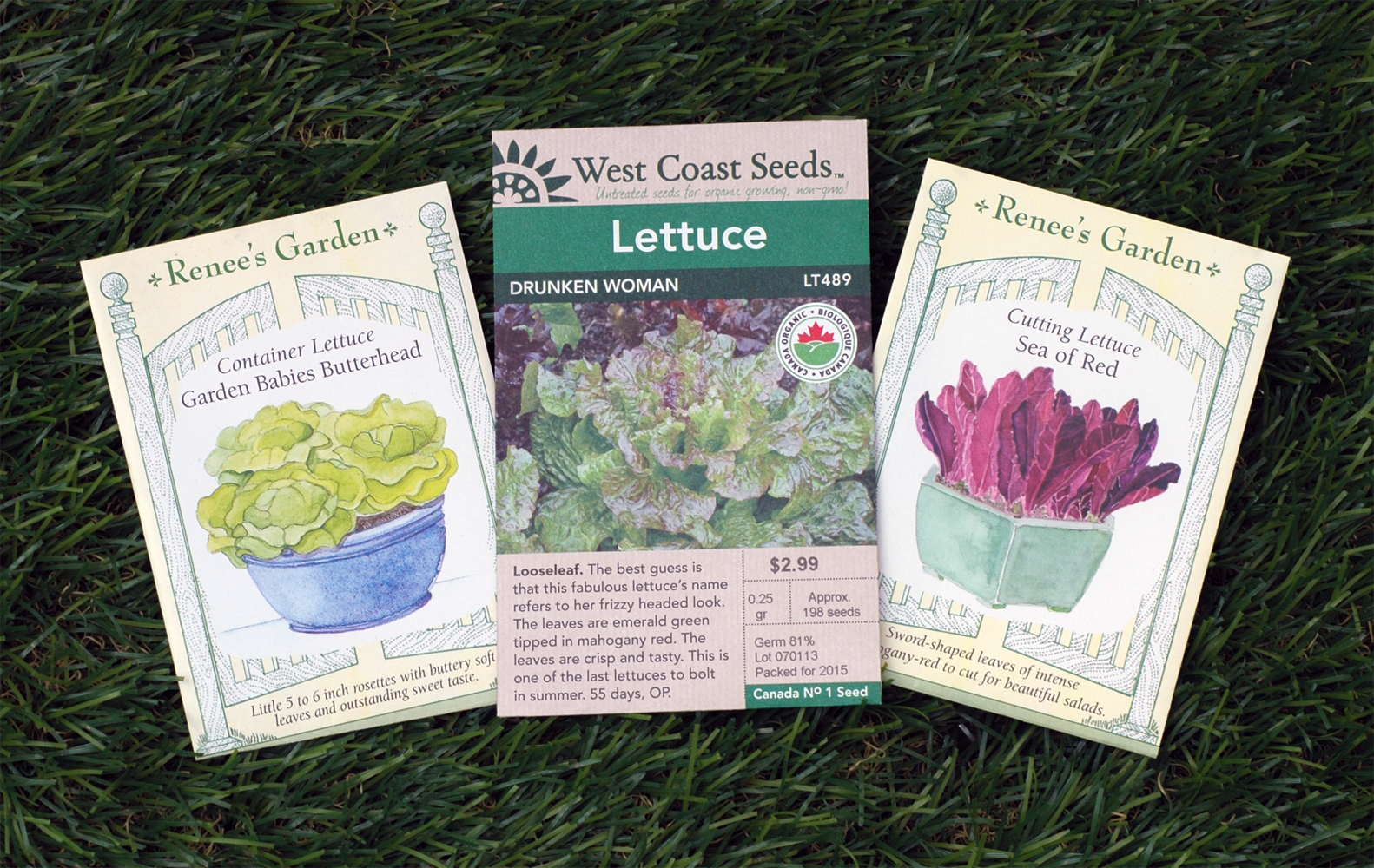 Lettuce-Seeds-Edmonton-stalbert