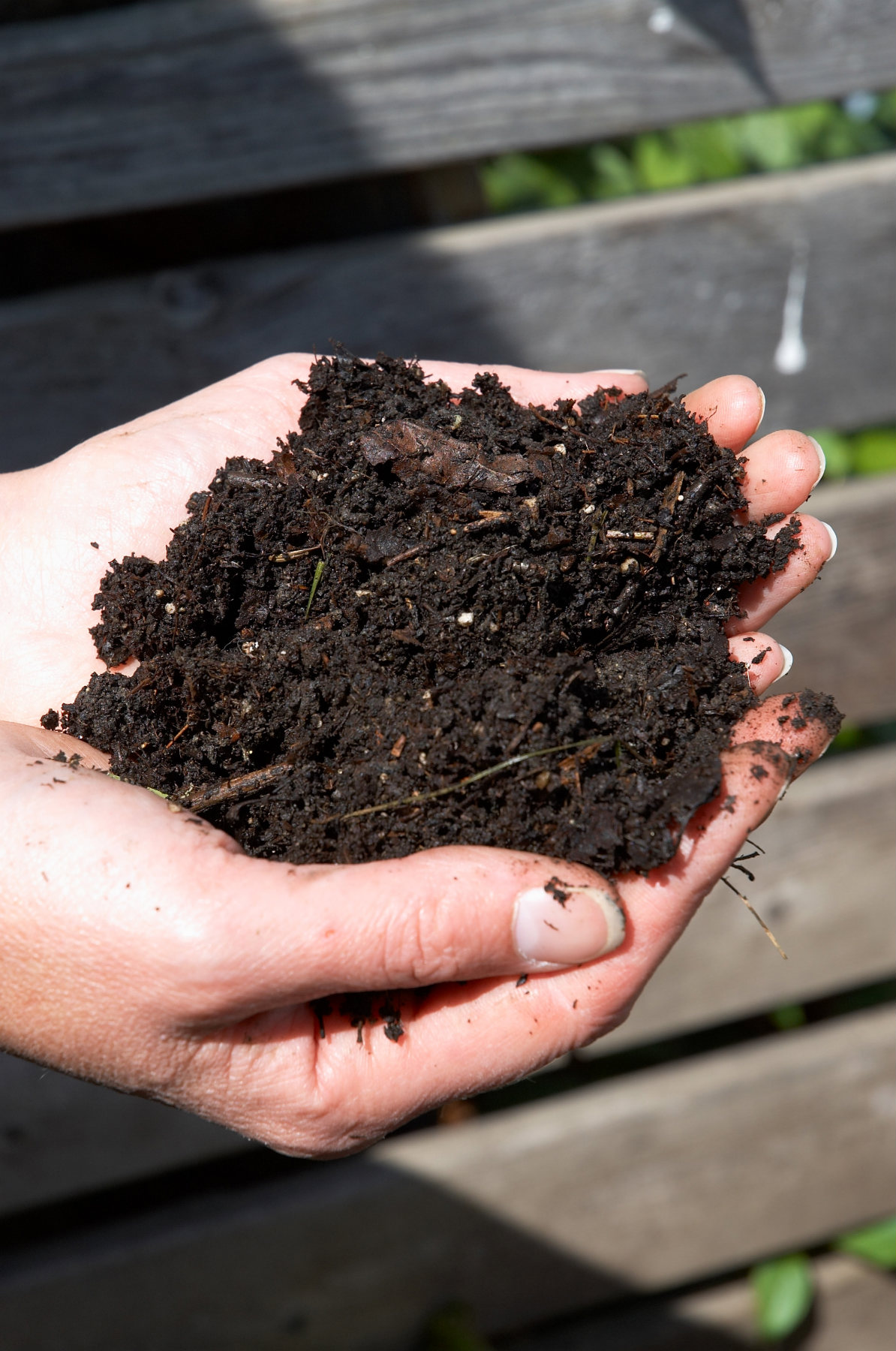 jim-hole-soil-loam-edmonton-stalbert-yeg